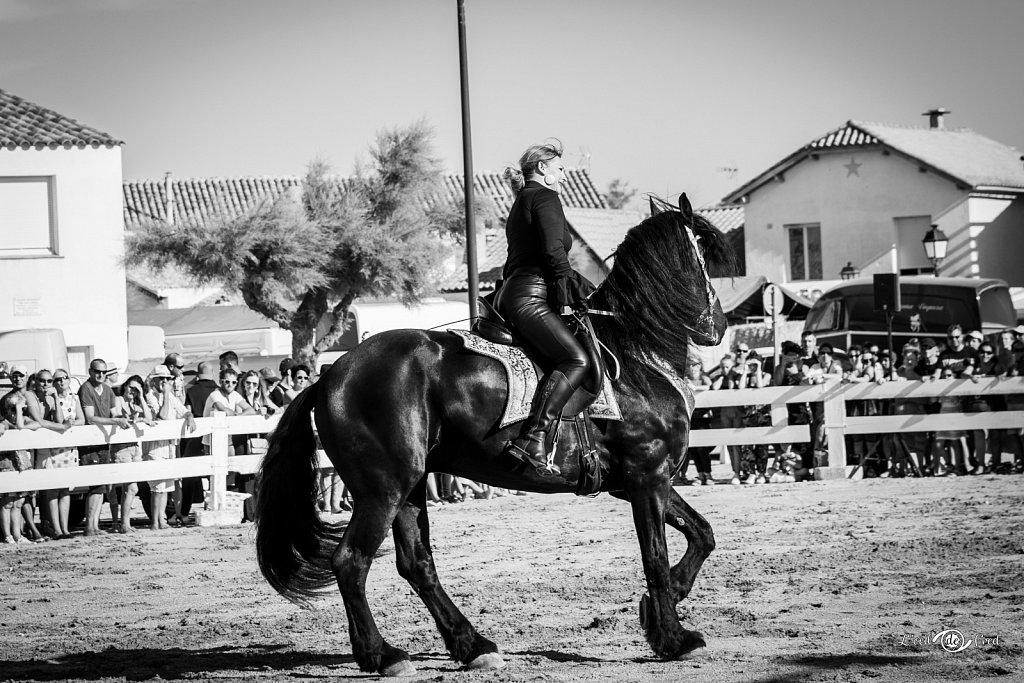2019-07-15-Feria-Equestre-Ste-Marie-067.jpg